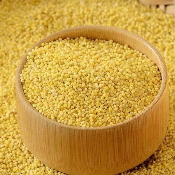 Gambar Makanan Millet